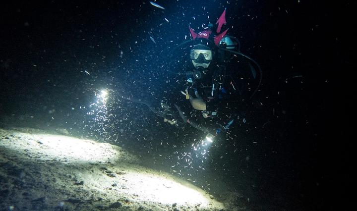 Black Scuba Diver at night