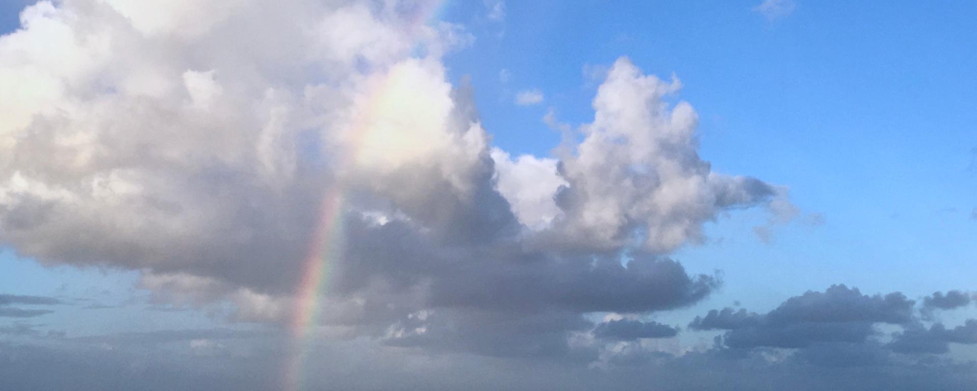 Rainbow Saba