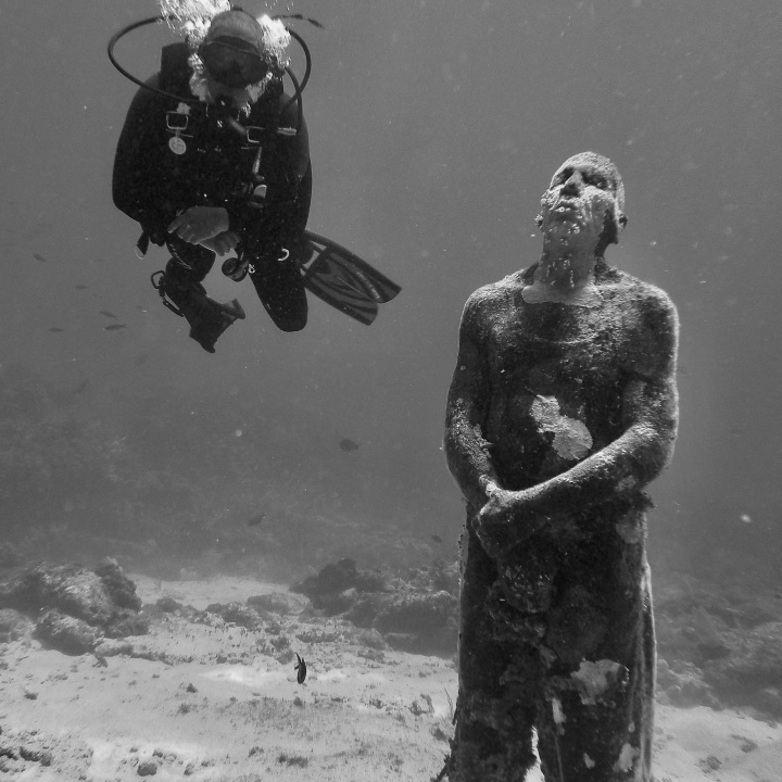 statue and black diver